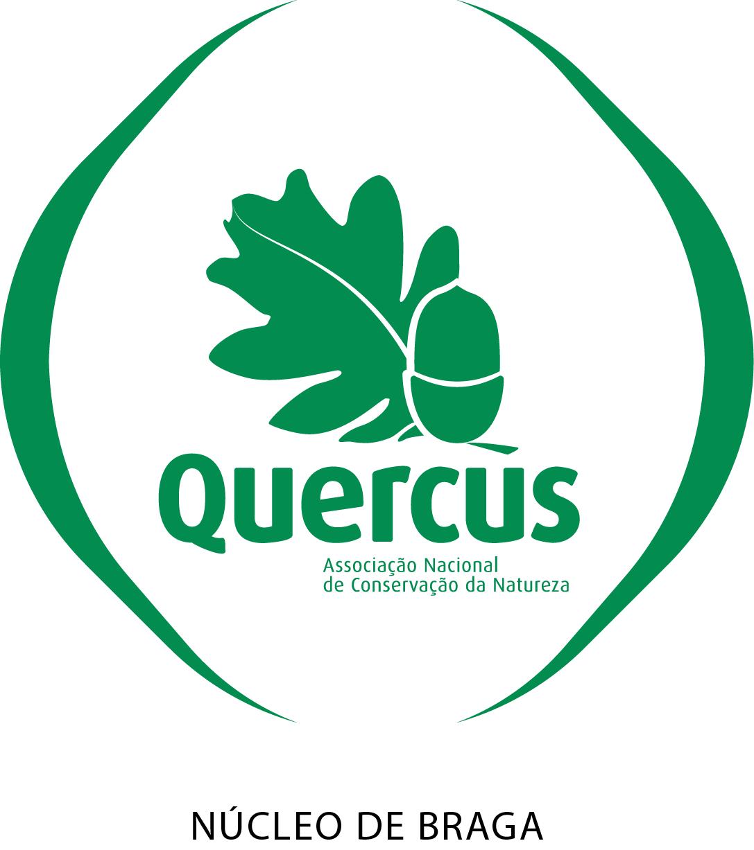 quercus braga.png